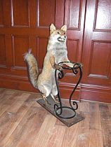 Stuffed Fox Umbrella Stand