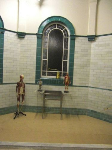 Victorian Operating Theatre with Anatomy Model